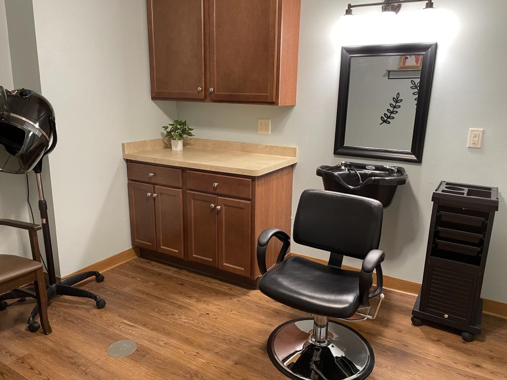 Salon chair with mirror